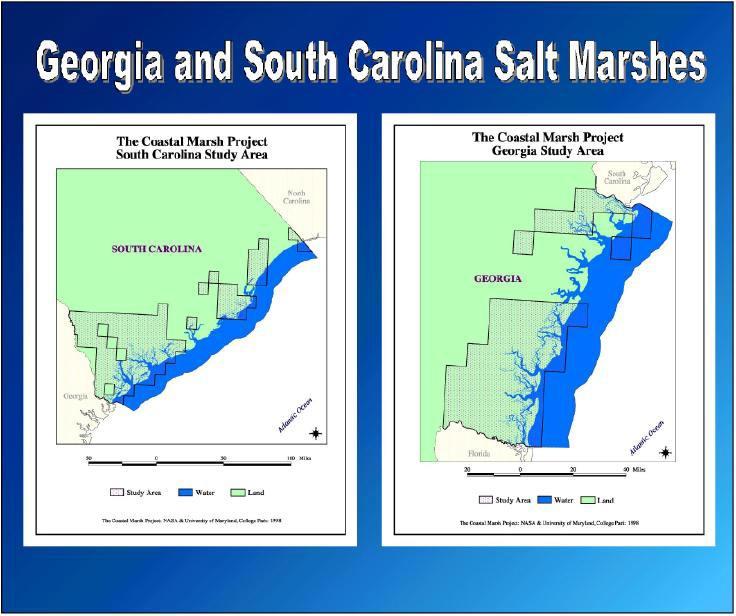 Salt Marshes on map showing seven rivers georgia, salt map u s, salt map recipe, salt river map ga,